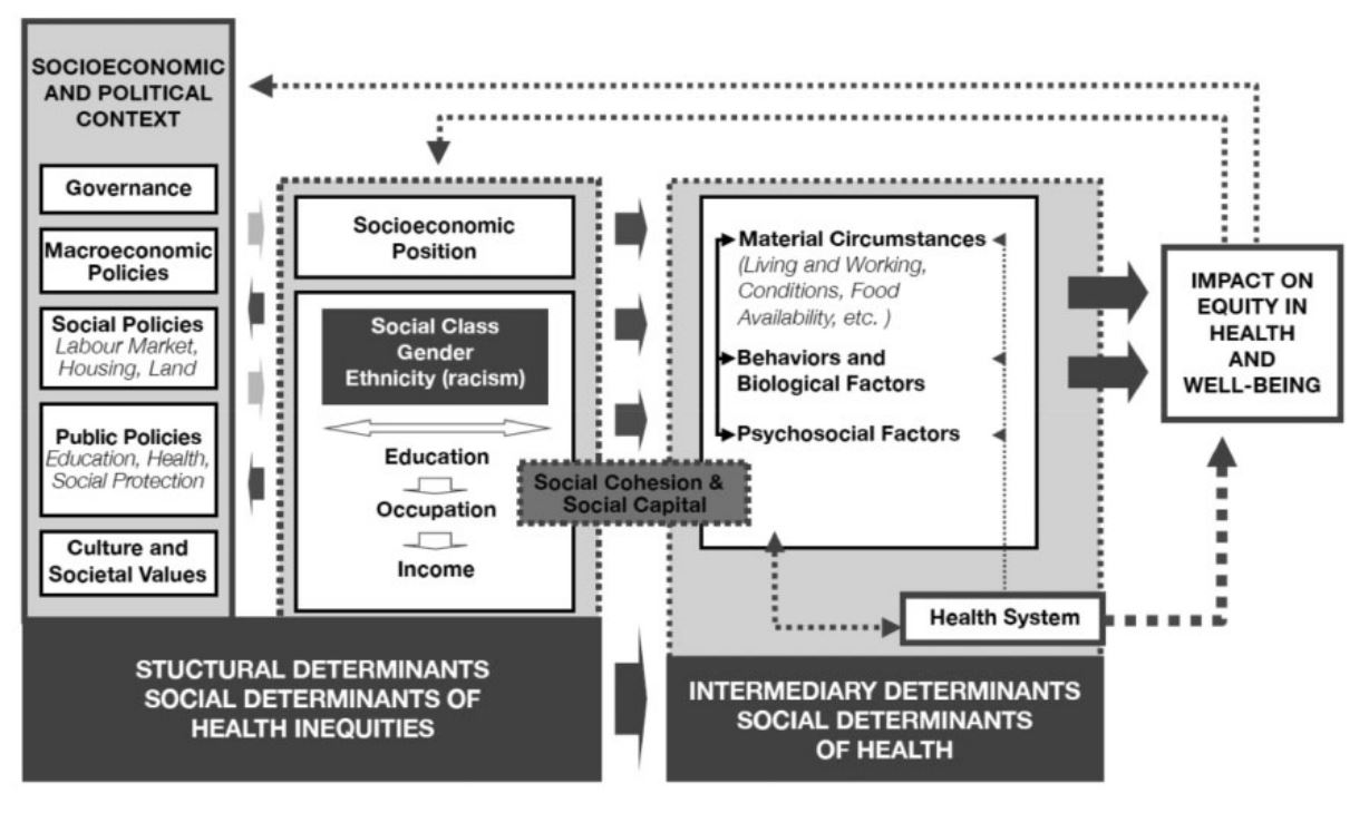 Social enterprises' impact on older people's health and well-being